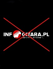 The end of cooperation with the infogitara.pl portal